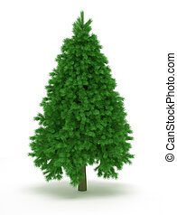 Christmas tree - Undecorated christmas tree over white - 3d...