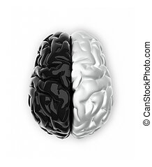 Ying and yang mind - Brain in black and white like Ying and...