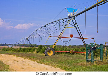 Irrigation Field Lines - Farmland with irrigation pipe lines...
