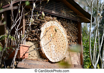 insect hotel with wild bees and wesps.