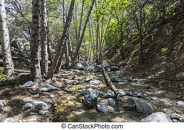 Arroyo Seco Creek in the San Gabriel Mountains