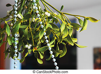 Mistletoe - Green mistletoe and ribbon of silver beads