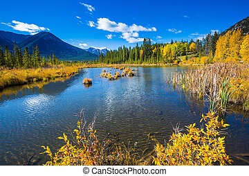 Shallow Lake Vermilion among the forests - Sunny autumn day...