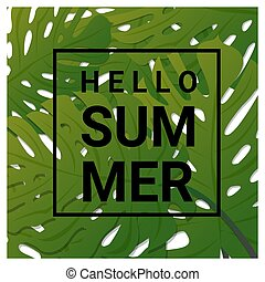 Hello summer background with tropical green leaves