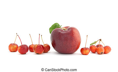 Big and small apples on white background