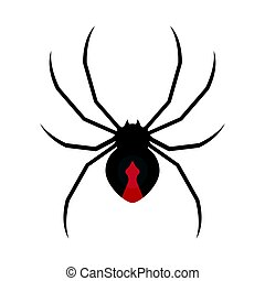 Vector flat style illustration of spider.