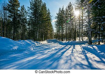 Snowy winter in the Arctic, Lapland. The dim northern sun...