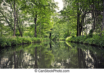 Green canals in german Spreewald. - Spreewald is a...