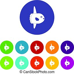 Small fish icons set flat vector - Small fish icons set in...