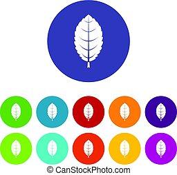 Hawthorn leaf icons set flat vector - Hawthorn leaf icons...