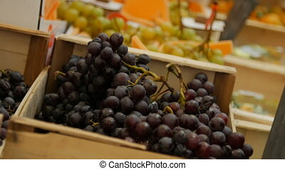 Close up of bunches of grapes. - Close up of bunches of dark...