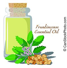 Frankincense Essential Oil - Bottles with essential oil of...