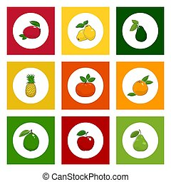 Icons Tropical Fruits on Colored Background - White Icons...