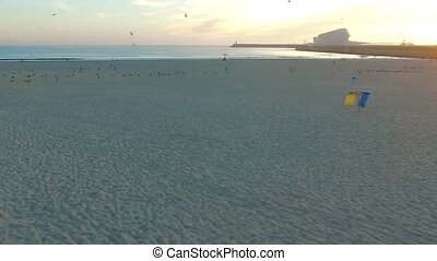 Flying over seagulls on the Atlantic coast in Porto. Aerial....