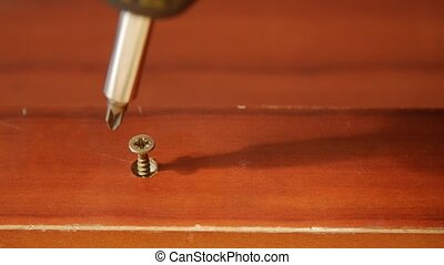 Close up of a wood screw.