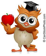 coruja, maçã