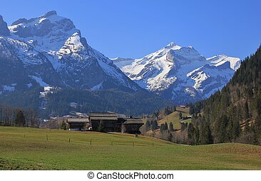 Spring day in the Bernese Oberland - Arrival of spring in...
