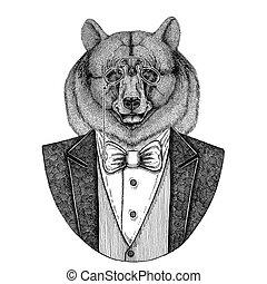Black bear American bear Aper, boar, hog, wild boar, hog,...