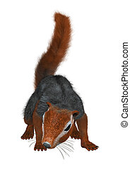 3D Rendering Red Bush Squirrel on White - 3D rendering of a...