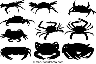 Crab Silhouette vector illustration