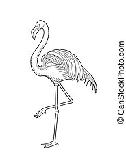 Cute graphic flamingo in the side view. Pretty exotic bird...