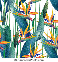 Watercolor strelitzia pattern - Watercolor strelitzia...