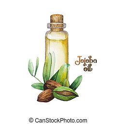 Watercolor jojoba plant - Watercolor jojoba design. Hand...