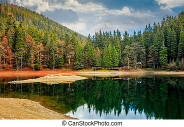 wooden pier on mountain Lake in Synevir National Park -...