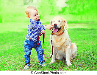 Little boy child is playing with Golden Retriever dog on the...