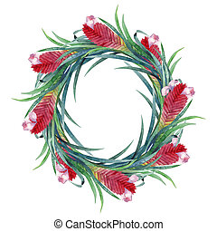 Watercolor tillandsia cyanea wreath isolated on white...