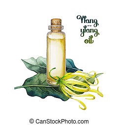 Watercolor ylang ylang oil. Hand painted bottle, leaves and...