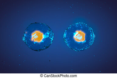 Abstract illustration of cell in mitosis or multiplication -...