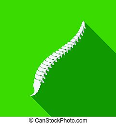 Spine icon in flat style isolated on white background....