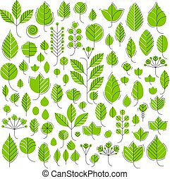 Vector illustration of green tree leaves isolated on white...