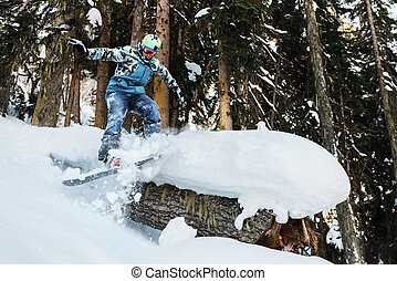 snowboarder is riding and freeriding in mountain forest -...