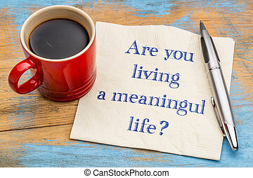 Are you living a meaningful life? A question on a napkin...