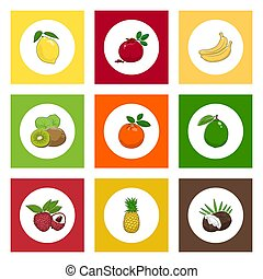 Icons Citrus Tropical Fruits on Colored Background - White...