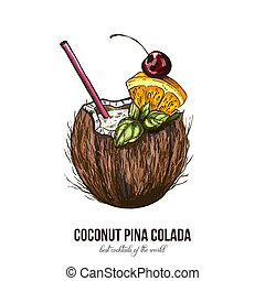 Coconut Pina Colada, vector illustration, colored sketch...