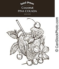 Coconut Pina Colada. Composition. Vector sketch illustration...
