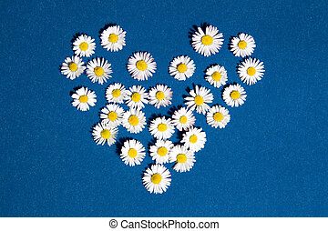Heart flowers - Heart drawn with daisies and dandelion...