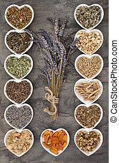 Medicinal Herbs for Anxiety Disorders