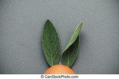 Easter bunny ears made from sage leaves . Minimal easter...