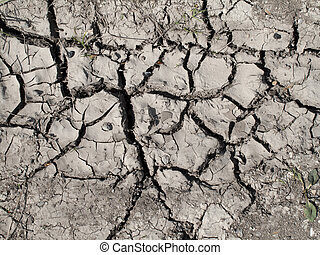 Cracked soil - Dry cracked soil in the countryside due to...