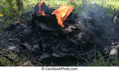 Black burnt paper in the fire with smoke. Burning book on...