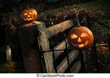 Two pumpkins sitting on fence - Two Halloween pumpkins...