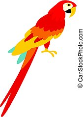 Scarlet macaws icon isolated - Scarlet macaws icon flat...