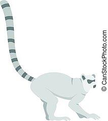 Lemur icon isolated - Lemur icon flat isolated on white...