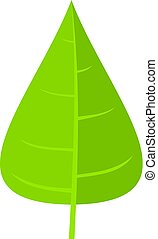 Green poplar leaf icon isolated - Green poplar leaf icon...