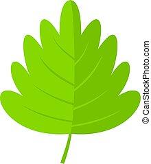 Green hawthorn leaf icon isolated - Green hawthorn leaf icon...