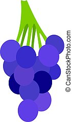 Bunch of blue grapes icon isolated